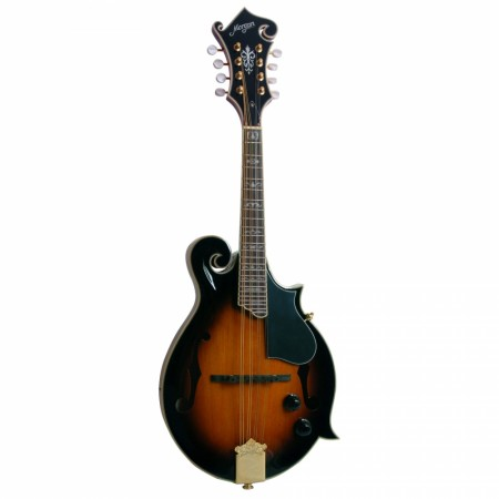 Morgan M 70 SE AV Mandolin m/pickup